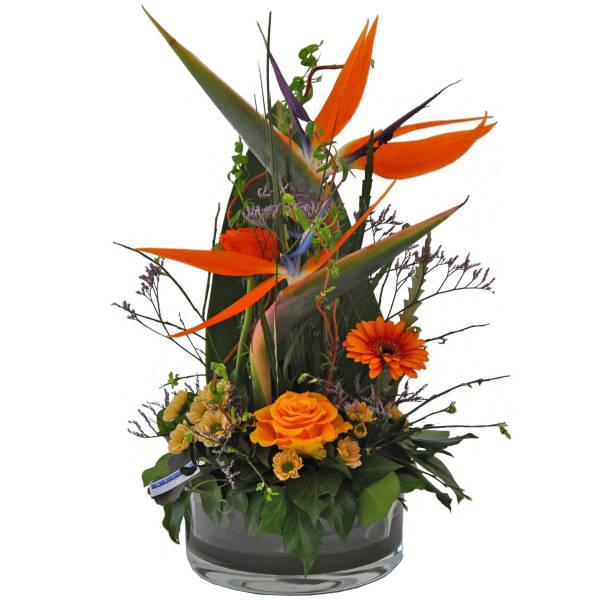 STRUB Blumengesteck mit Strelitzia