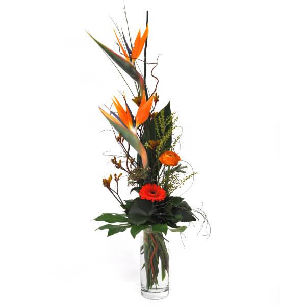 STRUB Blumenstrauss mit Strelitzia