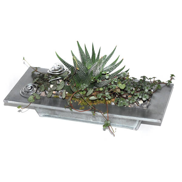 STRUB Geschenkidee Pflanzengefäss metall
