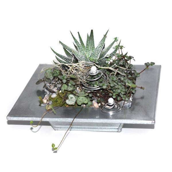 STRUB Geschenkidee Pflanzengefaess metall