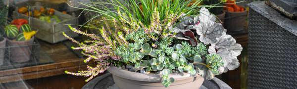 STRUB Blumenschale für Grab im Herbst