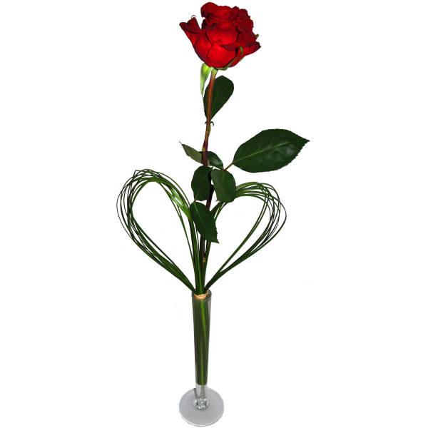 STRUB Rose rot mit Herz